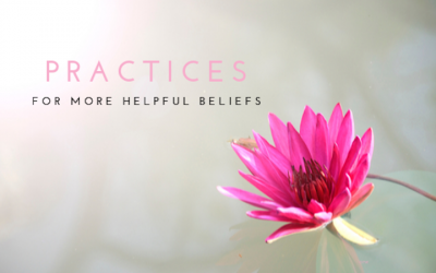 Practice 2: Decode Your Belief Programs