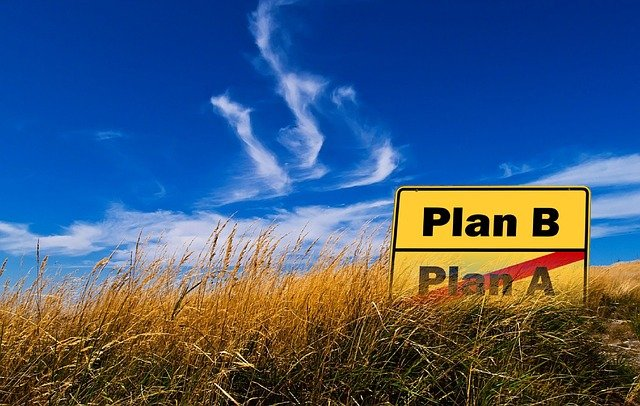 Business Without Plan B